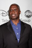 Andrew Braugher Photo 1