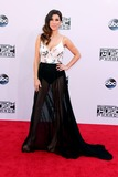 Adrianna Costa Photo - LOS ANGELES - NOV 23  Adrianna Costa at the 2014 American Music Awards - Arrivals at the Nokia Theater on November 23 2014 in Los Angeles CA