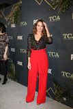 Amy Acker Photo - LOS ANGELES - FEB 1  Amy Acker at the FOX TCA All-Star Party at the Fig House on February 1 2019 in Los Angeles CA