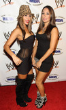 The Bella Twins Photo - WWE Divas The Bella Twins Nikki and Brie pose on the red carpet at the annual WWE SummerSlam kickoff party in association with the Muscular Dystrophy Association held at the Tropicana Bar inside the Hollywood Roosevelt Hotel Los Angeles CA 081310