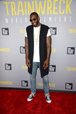 Amare Stoudemire Photo - July 14 2015 New York CityAmare Stoudemire attending the Trainwreck World Premiere at Alice Tully Hall on July 14 2015 in New York CityCredit Kristin CallahanACE PicturesTel 646 769 0430