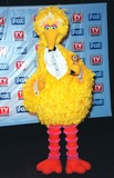 Big Bird Photo - 01FEB99  BIG BIRD at the 1st Annual TV Guide Awards in Los Angeles  Paul Smith  Featureflash