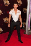 Aljaz Skorjanec Photo - Aljaz Skorjanec attending the red carpet launch for Strictly Come Dancing 2014 at Elstree Studios London 02092014 Picture by Alexandra Glen  Featureflash