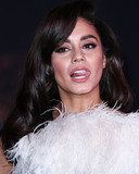 Vanessa  Hudgens Photo - HOLLYWOOD LOS ANGELES CALIFORNIA USA - JANUARY 14 Actress Vanessa Hudgens wearing a Georges Shobeika dress arrives at the Los Angeles Premiere Of Columbia Pictures Bad Boys For Life held at the TCL Chinese Theatre IMAX on January 14 2020 in Hollywood Los Angeles California United States (Photo by Xavier CollinImage Press Agency)