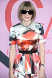 Anna Wintour Photo - BROOKLYN NEW YORK CITY NEW YORK USA - JUNE 03 Anna Wintour arrives at the 2019 CFDA Fashion Awards held at the Brooklyn Museum on June 3 2019 in Brooklyn New York City New York United States (Photo by Image Press Agency)