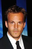 Stephen Dorff Photo 1