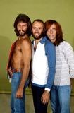 Bee Gees Photo - Bee Gees (Barry Mauricerobin) Photobob ShermanGlobe Photos Inc 1979 Mauricegibbretro