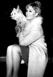 Kim Novak Photo - Kim Novak with Her Dog at London Airport 12231964 Globe Photos Inc Kimnovakretro