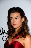 Cote de Pablo Photo 1
