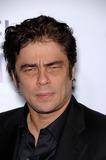 Benicio Del Toro Photo 1