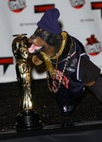 Triumph, The Insult Comic Dog Photo 1