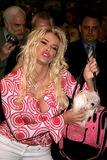 Anna Nicole Smith Photo 1