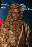 Amine Photo - The International Women Leaders Global Securty Summit at Essex House Hotel 160 Central Park South Date 11-16-o7 Photos by John Barrett-Globe Photosinc Asha Hagi Elmi Amin Member of Somalia Parliment